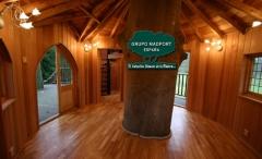 Casas arbol de madera