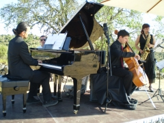 Actuaciones Musicales  Roseaux