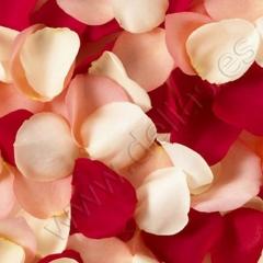 P�talos de rosa