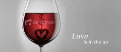 Vino para el amor. ¿quieres asegurarte lo de esta noche? consulta nuestros vinos love.