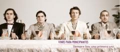�eres principiante en esto de los vinos? aqu� tienes una buena selecci�n para comenzar. vineame.com