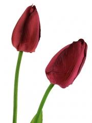 Tulipanes artificiales de calidad. tulipan artificial dos flores rojo oasiseoc.com