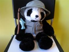 Oso panda pesacador