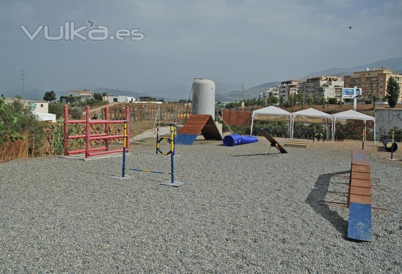 Escuela canina en Málaga: Torre del Mar