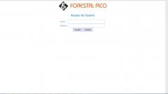 Sistema de importación de datos de clientes para forestal pico