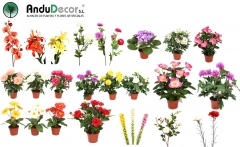 Plantas artificiales andudecor, geranio artificial, orquidea artificial, margaritas artificiales