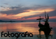 Fotografía Profesional, Fotos Naturaleza, Fotógrafo Naturaleza