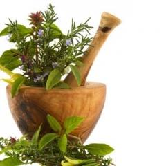 Remedios naturales desde la tierra