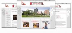 Dise�o web barcelona - disseny bcn - foto 36