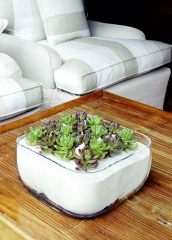 Cactus artificiales para decorar. articoencasa.com