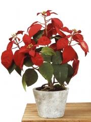 Poinsettia artificial de calidad. planta flor de pascua artificial en maceta cemento oasisdecor.com