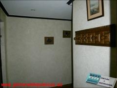 Alta decoraci�n genesis color esencia 572, pintura pl�stica mate blanco en techo y moldura en color