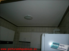 Pintura plastica mate en techo color blanco y moldura color marr�n oscuro