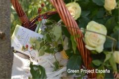 Anthyllis - skin care con licuado biológico de hollejo de uva roja