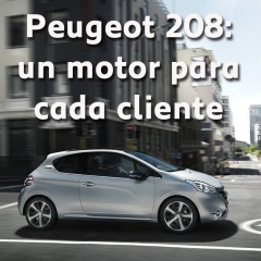 En Automoviles Torregrosa podrás encontrar una gran oferta de motores en la gama de 208 .