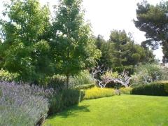 Hortus paisajistas - foto 15