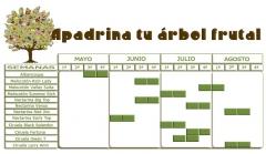 Calendario de variedades. Toma nota y elige la que m�s te gusta, ya sabes que puedes elegir m�s de 1