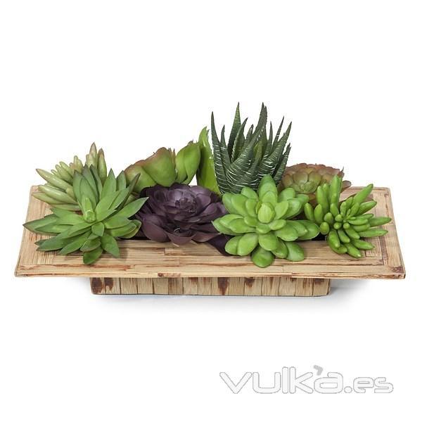 Foto plantas artificiales conjunto de planta mini crasas for Jardines con plantas artificiales
