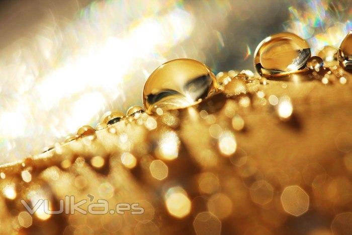 Vital Oil: Oro fluído para cuerpo, cara y cabello