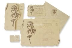 Caracola regalos, invitaciones y detalles de boda