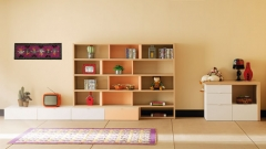 Muebles juveniles modernos con los muebles de life box