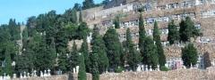 Cementerio de monjuic