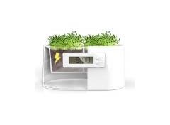 Funcional, natural, y ecológico, son las 3 mejores palabras que describen a este magnífico gadget.
