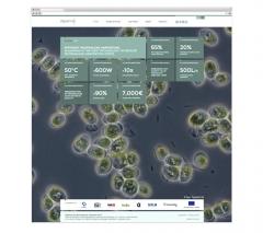 Logotipo y desarrollo web para Algaemax