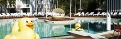 Hoteles con encanto, hotel rural con encanto, escapadas rurales - foto 7