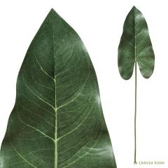 Plantas artificiales. hoja anthurium artificial 68 1 - la llimona home