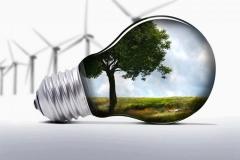 Bioenergy cantabria - foto 9