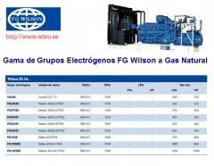 modelos de grupos electrogenos Fg Wilson