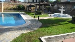 Mantenimiento de jardines y piscinas en sevilla