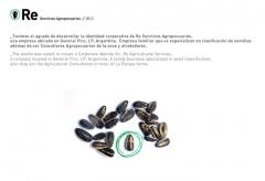 Re servicios agropecuarios - identidad - impresi�n - web - systemidea