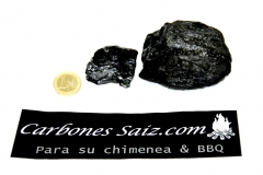 CARBONES SAIZ