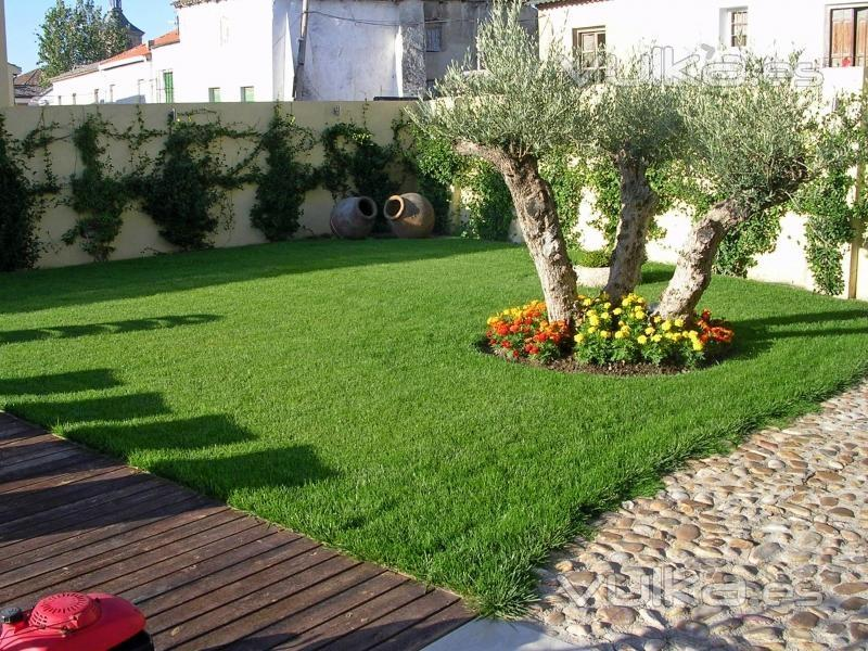 Foto dise o y mantenimiento de jardines for Modelos de jardines sencillos