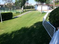 Jardines del sur. Jardinería Sevilla. Jardineros.  - Foto 35