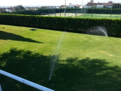 Jardines del sur. Jardinería Sevilla. Jardineros.  - Foto 32