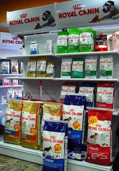 Amplia variedad de piensos de gama alta, media y económicos para nuestras mascotas