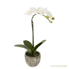 Plantas artificiales con flores. planta flores orquideas artificiales crema - la llimona home