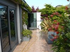 Terraza con macetas de fabrica y �rboles de gran porte