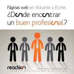 Páginas web Alicante y Elche, ¿dónde encontrar a un buen profesional?