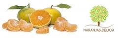 Mandarinas de naranjasdelicia