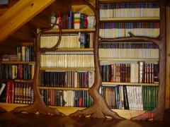 Librer�a modernista