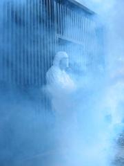 Fumigacion  contra plagas por Ailcapa