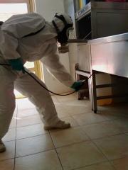 Fumigacion cucarachas en cocinas industriales por Ailcapa
