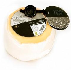 Campoestrella torta pastora quesería la antigua de fuentesaúco