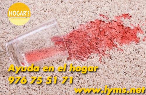 LYMS - Empresa de Limpieza en Zaragoza | Organizaci�n Aragonesa de Mantenimientos