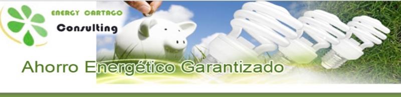 ENERGY CARTAGO Consulting