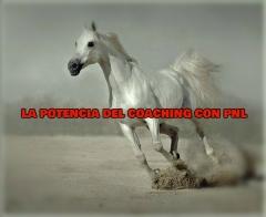 Coaching con pnl. sesiones y formación